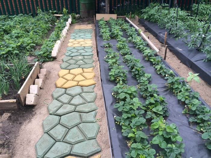 пример использования ярких садовых дорожек в ландшафтном дизайне
