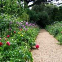 идея использования красивых садовых дорожек в дизайне двора картинка