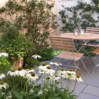 пример красивого декора палисадника в частном дворе фото