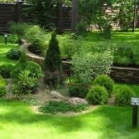 вариант необычного дизайна огорода в частном дворе картинка