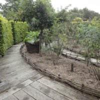 идея необычного дизайна огорода на даче фото