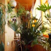 идея использования ярких идей оформления зимнего сада в доме фото