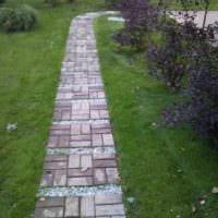 вариант применения светлых садовых дорожек в ландшафтном дизайне картинка