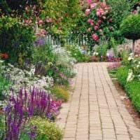 пример использования светлых садовых дорожек в ландшафтном дизайне картинка
