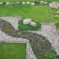 пример использования ярких садовых дорожек в ландшафтном дизайне фото