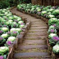 идея необычного декора огорода в частном дворе картинка