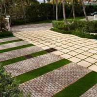 идея применения светлых садовых дорожек в ландшафтном дизайне картинка