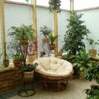 пример применения светлых идей оформления зимнего сада картинка