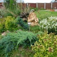 идея необычного декора огорода на даче фото