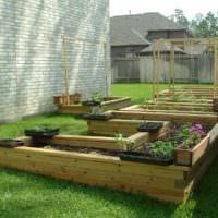вариант красивого декора огорода в частном дворе картинка