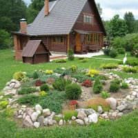 вариант красивого декора огорода на даче картинка
