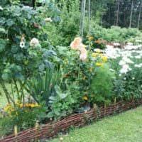 пример светлого дизайна огорода в частном дворе фото