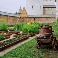 пример яркого декора огорода в частном дворе картинка