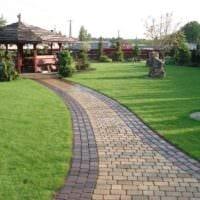 вариант применения необычных садовых дорожек в дизайне двора картинка
