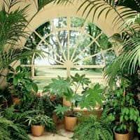 идея применения красивых идей оформления зимнего сада картинка