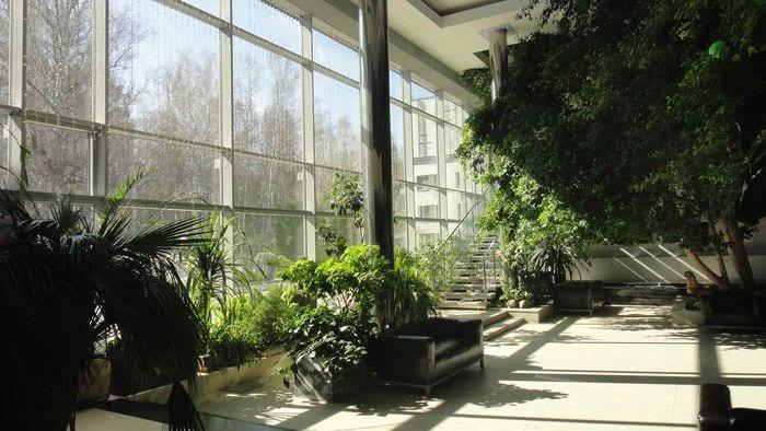 пример применения красивых идей оформления зимнего сада в доме