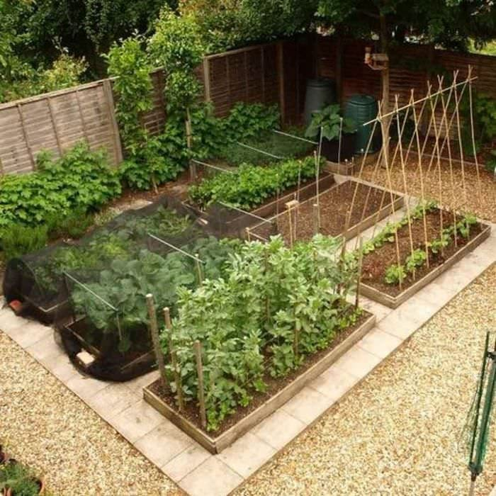 пример красивого декора огорода на даче