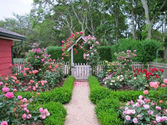 пример красивого дизайна палисадника в частном дворе