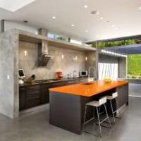 дизайн кухни без верхних навесных шкафов идеи