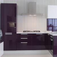 кухня в фиолетовом цвете фото