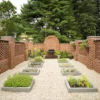 огород с грядками дача фото дизайна