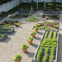 огород с грядками дача идеи дизайн