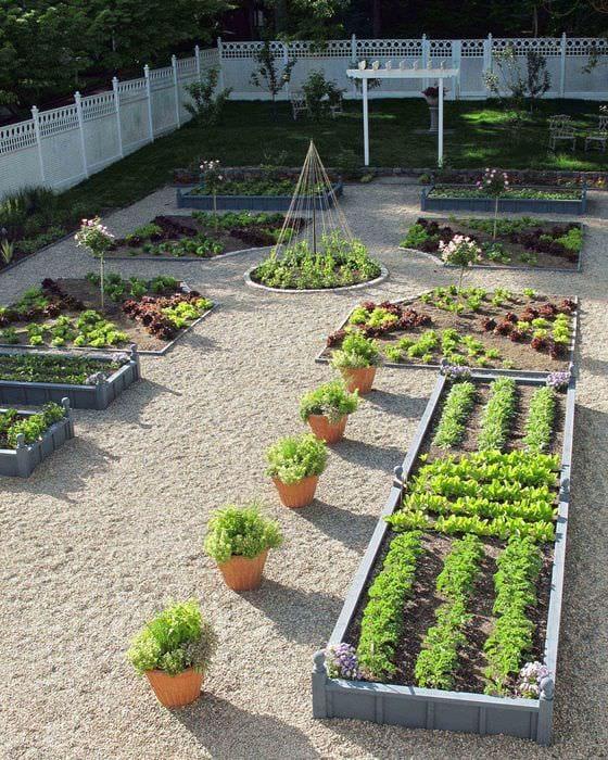 фотообои красивый сад и огород своими руками фото фото очень