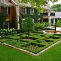 огород с грядками дача идеи дизайна