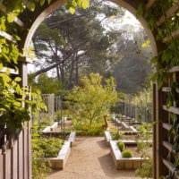 огород с грядками дизайн