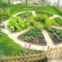 огород с грядками фото дизайна