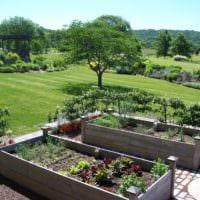 огород с грядками идеи дизайна