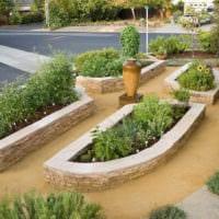 огород с грядками на даче дизайн фото