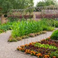 огород с грядками на даче дизайн идеи