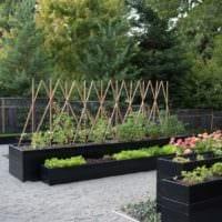 огород с грядками на даче фото дизайн