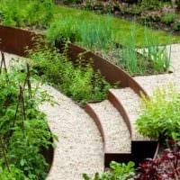огород с грядками на даче фото дизайна