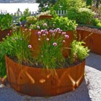 огород с грядками на даче идеи фото