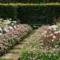 садовый участок 4 сотки идеи дизайна
