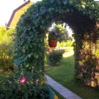 садовый участок 4 сотки оформление фото
