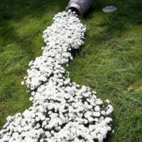 садовый участок 4 сотки тонкости ландшафтного дизайна декор варианты
