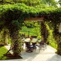 садовый участок 4 сотки тонкости ландшафтного дизайна фото оформление
