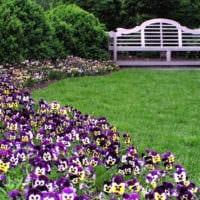 садовый участок 4 сотки тонкости ландшафтного дизайна идеи оформления