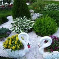 садовый участок 4 сотки тонкости ландшафтного дизайна клумбы