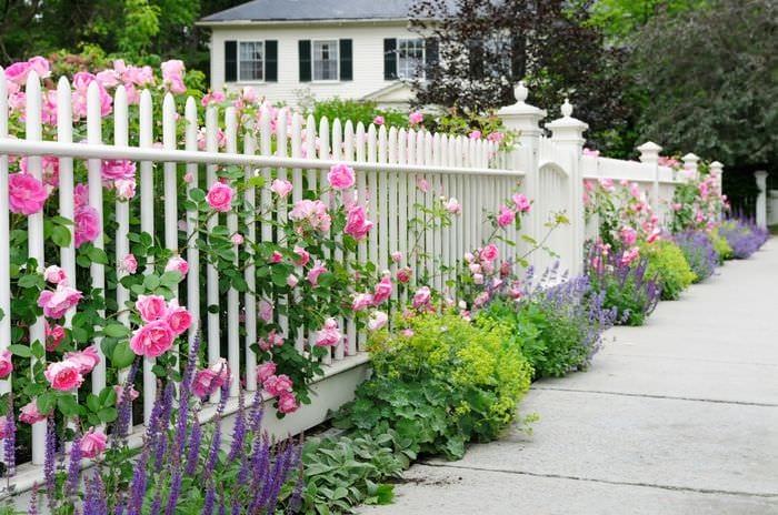 заборчик с цветами