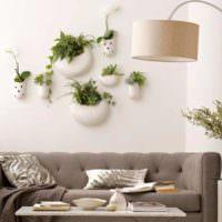 Растения в кашпо над диваном