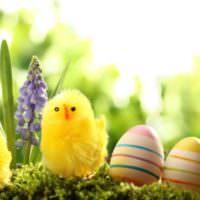Пасхальные яйца и желтый цыпленок своими руками
