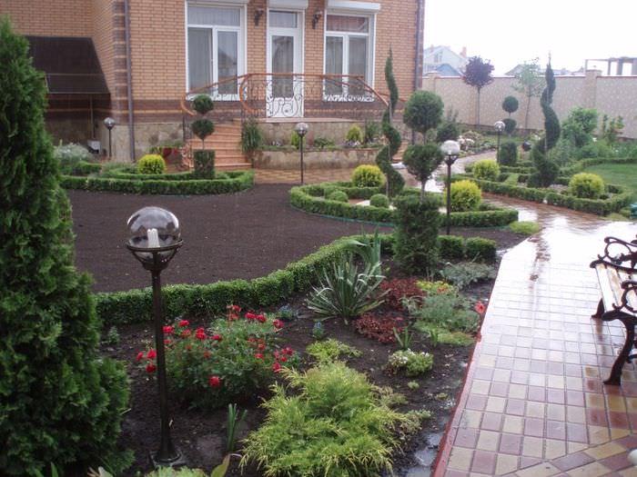 Низкорослые растения и цветы на садовых клумбах