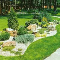 Садовая композиция из хвойных растений