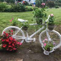 Велосипед с горшками для цветов в оформлении садового участка
