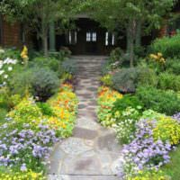 Клумбы с цветы по краям садовой дорожки