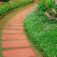 Садовая тропинка из красного бетона